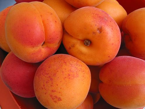 http://www.methodsofhealing.com/files/2008/12/apricots.jpg